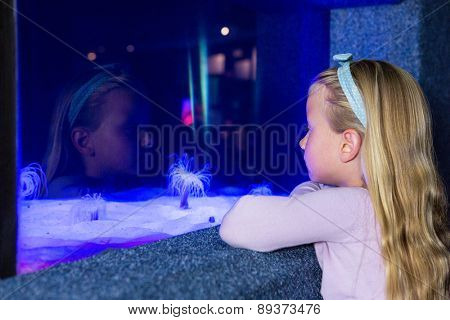 Young woman looking at sea anemone in tank at the aquarium