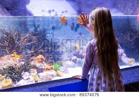 Young woman looking at starfish-tank at the aquarium