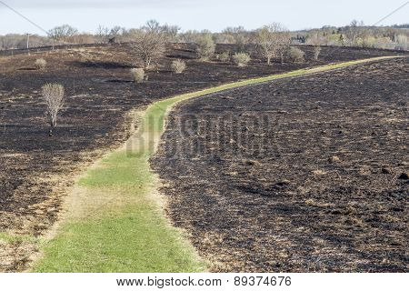 Burned Prairie