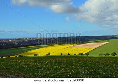 Rolling countryside of the Sussex South Downs.