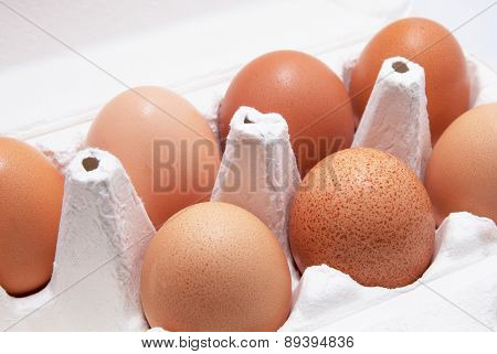 Seven brown eggs