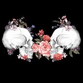 pic of day dead skull  - Roses and Skull - JPG