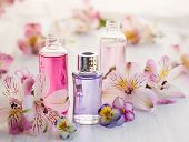 picture of massage oil  - Bottles of essential aromatic oils surrounded by fresh flower - JPG
