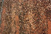 picture of red roof tile  - roof tiles texture on old church architectural background - JPG