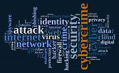 picture of cybercrime  - Word cloud illustration which deals with cybercrime - JPG
