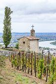 image of chapels  - grand cru vineyard and Chapel of St - JPG