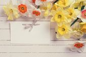 picture of orange blossom  - Border from colorful yellow orange and white spring flowers and empty tag on white painted wooden planks - JPG