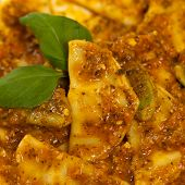 foto of shredded cheese  - Cheese and spinach stuffed ravioli pasta with tomato sauce and parmesan cheese - JPG