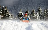 stock photo of snow-slide  - a little boy sledging in the snow with an adult - JPG
