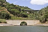 Bridges of the Douro River
