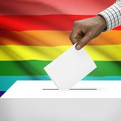 pic of transgendered  - Ballot box with flag on background  - JPG