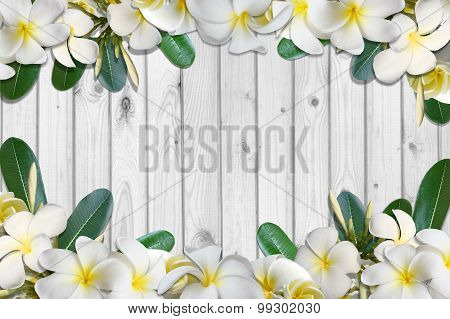 Frangipani flowers and leaf frame on white wood floor background