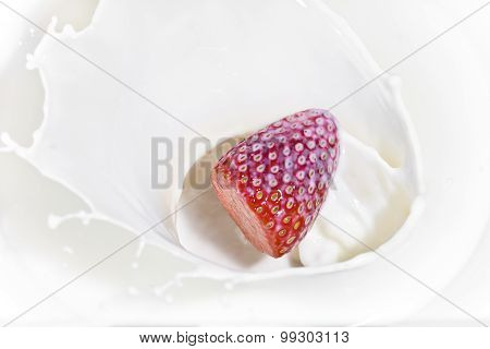 The strawberry falling in milk close up in a sunny day