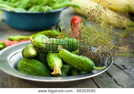 Cucumber Pickled