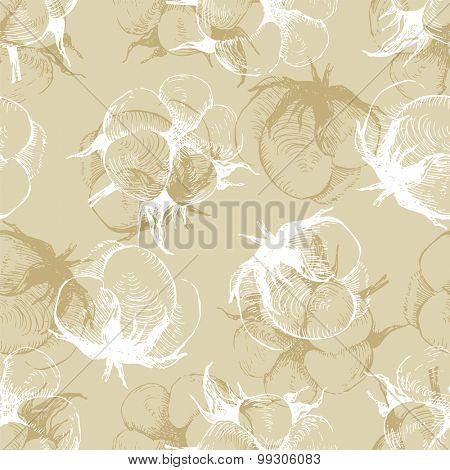 hand drawn cotton plant seamless pattern