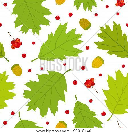 Seamless pattern of Canadian oak's leaves, acorns and rowan berries.