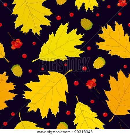 Autumn seamless pattern of Canadian oak's leaves, acorns and rowan berries. Dark blue background.