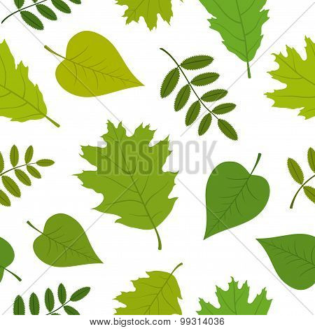 Forest seamless pattern with oak, rowan, lilac leaves. Vector set. White background.