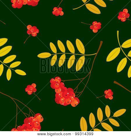 Autumn seamless pattern with red and orange Rowan berries and leaves. Vector illustration. Dark gree
