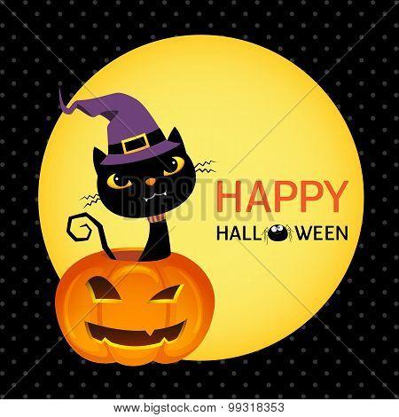 Cute Black Cat On Halloween Pumpkin Card