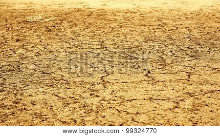 Drought Lad