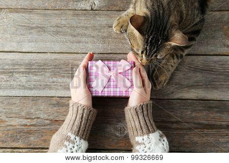 Female hands holding gift box