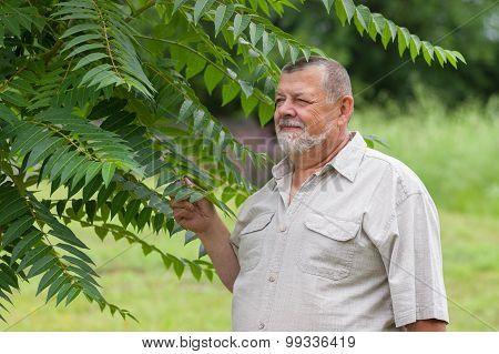 Outdoor portrait of a bearded senior man