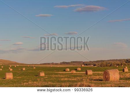 Warm Hay Bale Landscape