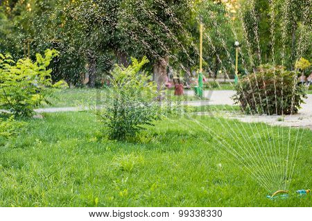 Watering The Grass On The Lawn In Summer Park