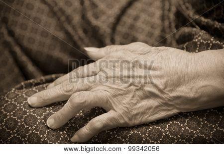 Asian Old Woman 's Hand Closeup