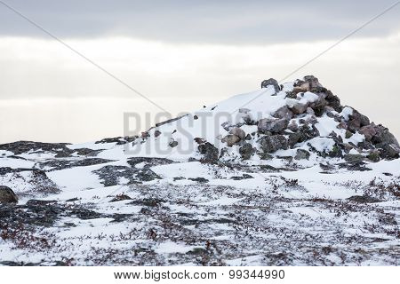 Rocky landscape and snow