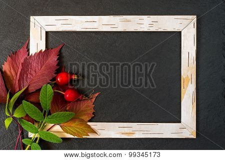 Frame From Birch Bark, Red And Green Leaves With Berries Of Briar