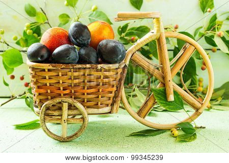 Ripe Plums And Nectarines In The Basket Of The Bicycle