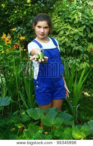 teen beautiful girl with ripe just from seedbed cucumbers