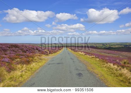 Rural Road With Moorland Scenery