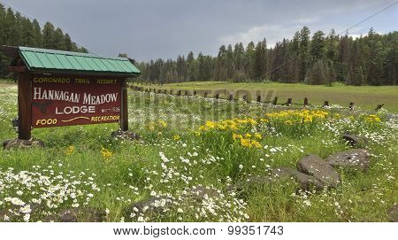 A Hannagan Meadow Lodge Sign Near Alpine, Arizona