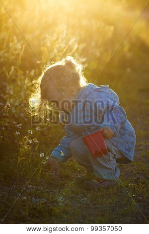 Girl Walking In The Bush And Collect The Flowers.