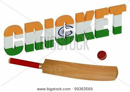 India Cricket Concept