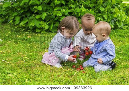 Three Little Girls Playing In The Garden
