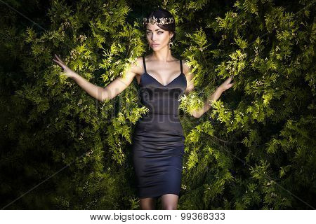 Fashion Photo Of Brunette Elegant Lady.