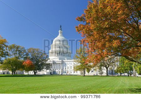 Washington DC, US Capitol Building in Autumn