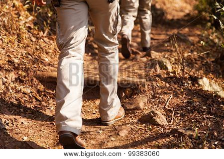 hikers walking in forest path