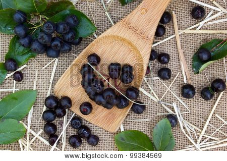 Black Chokeberry In A Spoon On Burlap Sack Background