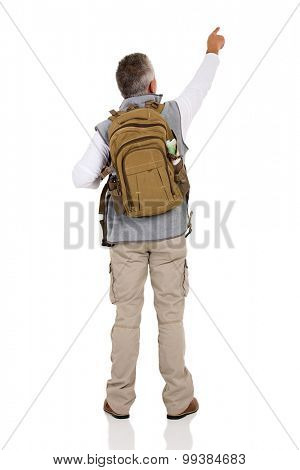rear view of male tourist pointing at empty copy space