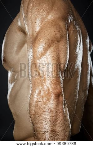Bodybuilder Showing Triceps Muscle