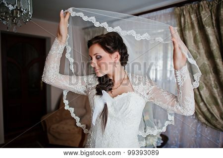 Bride Holding Veil At The Room