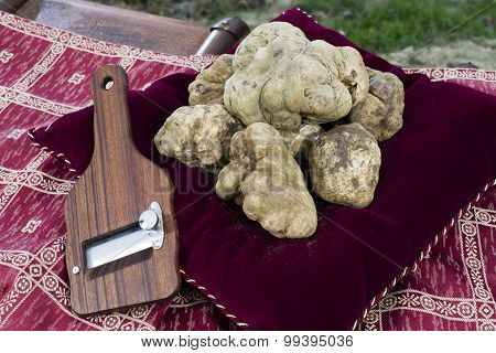 White Truffles From Piedmont
