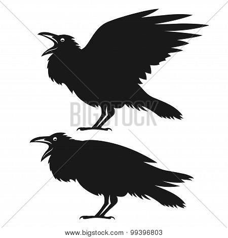 Black ravens set