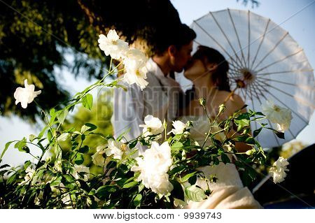just married couple standing and kissing in white flower bed