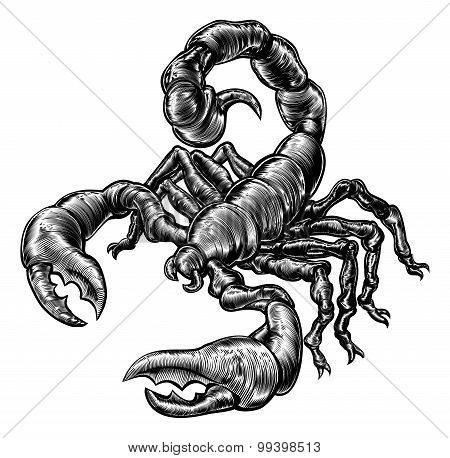 Vintage Woodblock Style Scorpion